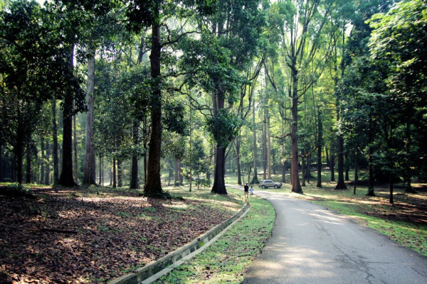 Top 5 Locations To Run In KL